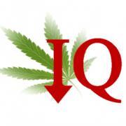 marijuana lowers IQ