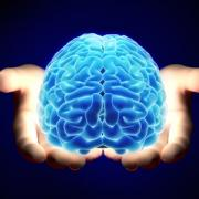 Hands holding a glowing brain