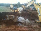 Delta Com crew drilling