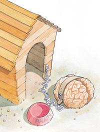 brain in doghouse