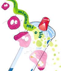 Un spray inhalante degrada la mielina