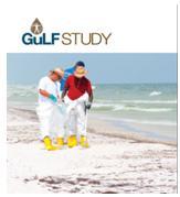 Gulf Study