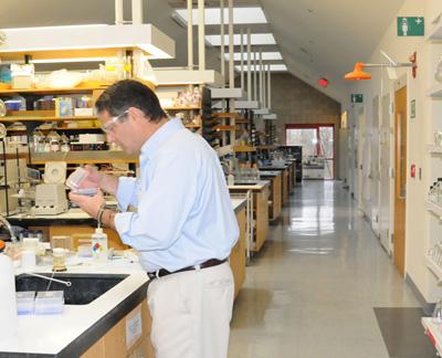 photo biomolecular lab