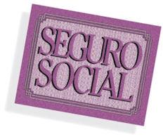 Gráfica con la palabra seguro social.