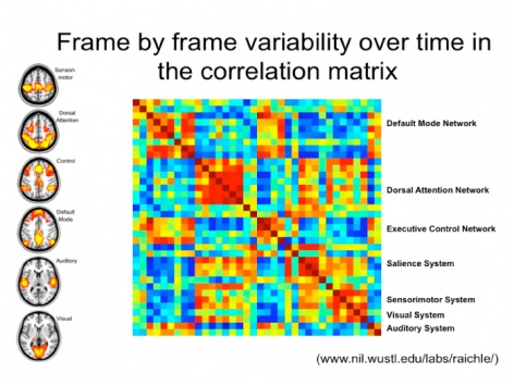 Frame by frame variability over time in the correlation matrix