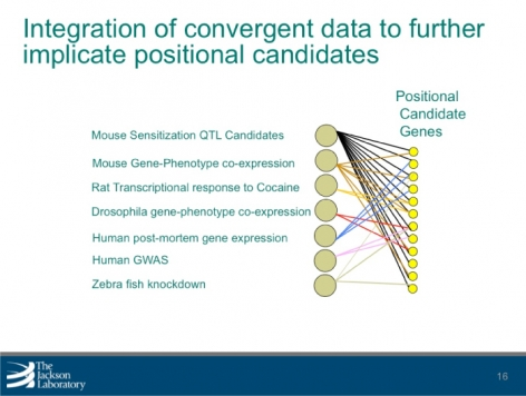 Integration of convergent data to further implicate positional candidates