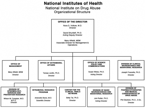 2012 NIDA Organizational Structure, link below for full description