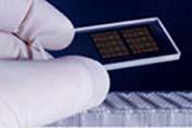 DNA chip.