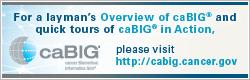 caBIG Public Website