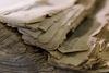 crumbling newspaper corners