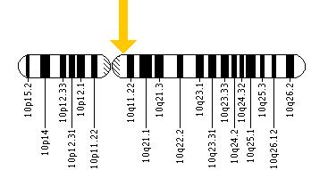 The RET gene is located on the long (q) arm of chromosome 10 at position 11.2.