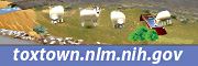 Tox Town Sheep Ranching with logo