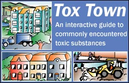 Tox Town collage with logo - 254X163 pixels - 17.4 KB