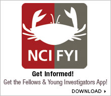 Image for Fellows and Young Investigators Application