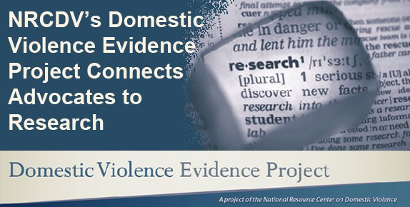 Domestic Violence Education Project