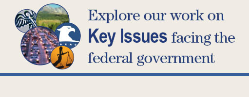 Key Issues Banner
